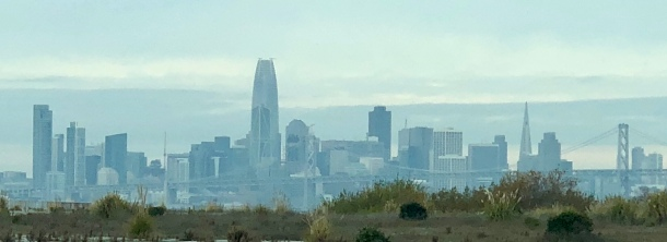 This is the view of San Francisco seen from the fair.
